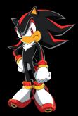 shadow-hedgehog.png
